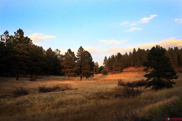145 Kinnikinnik Drive, Pagosa Springs, CO 81147 (MLS #777246) :: The Howe Group   Keller Williams Colorado West Realty