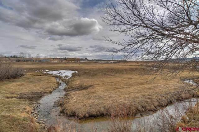 3024 Cr 509, Bayfield, CO 81122 (MLS #779649) :: The Dawn Howe Group | Keller Williams Colorado West Realty