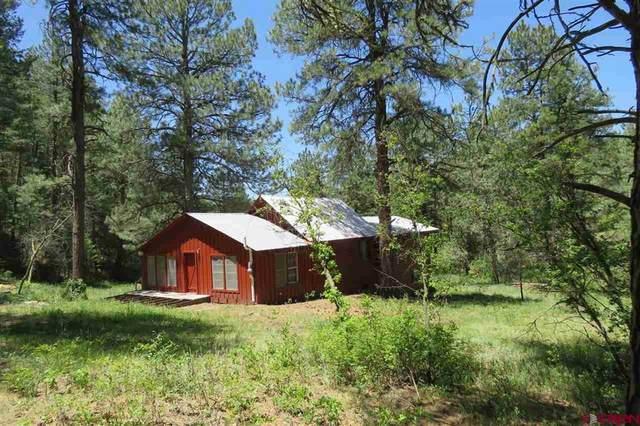 22 Aspen Rd, Pagosa Springs, CO 81147 (MLS #780221) :: The Howe Group   Keller Williams Colorado West Realty