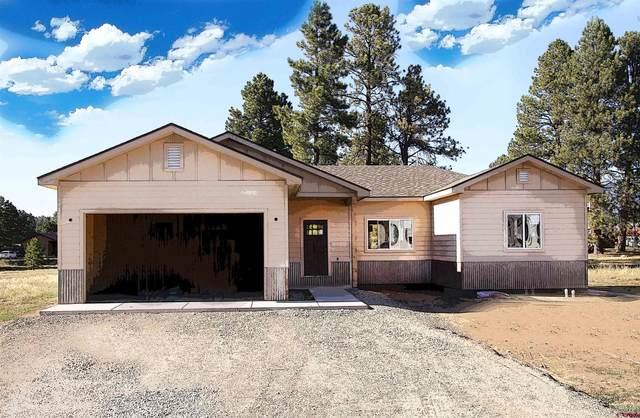 200 Hatcher Circle, Pagosa Springs, CO 81147 (MLS #780382) :: The Howe Group   Keller Williams Colorado West Realty
