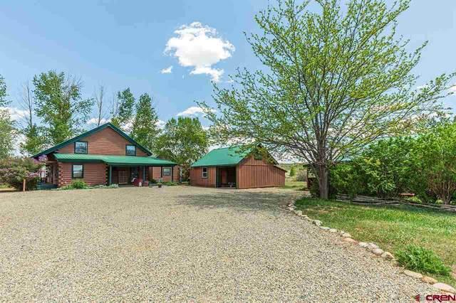 1260 County Road 222, Durango, CO 81303 (MLS #780473) :: Durango Mountain Realty