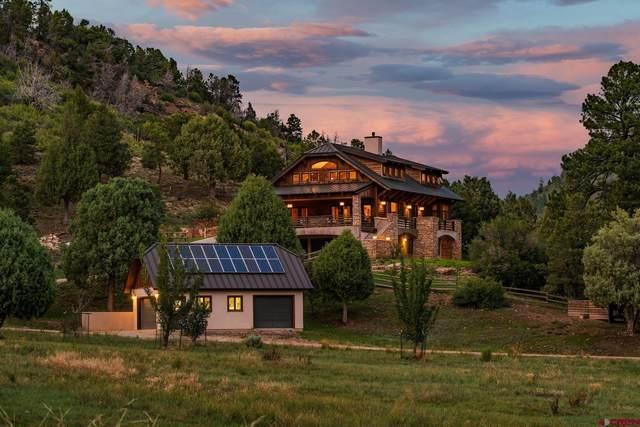 6137 Road 46, Mancos, CO 81328 (MLS #780523) :: The Howe Group | Keller Williams Colorado West Realty