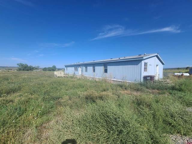 386 County Road 333, Ignacio, CO 81137 (MLS #782023) :: The Howe Group   Keller Williams Colorado West Realty