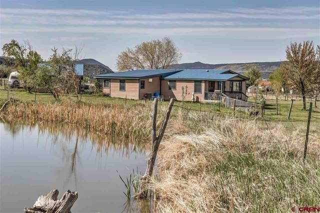 838 Cr 216, Durango, CO 81303 (MLS #782088) :: The Howe Group   Keller Williams Colorado West Realty