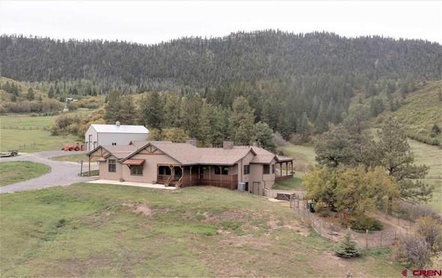 250 Sunset Lane, Durango, CO 81301 (MLS #782504) :: Durango Mountain Realty