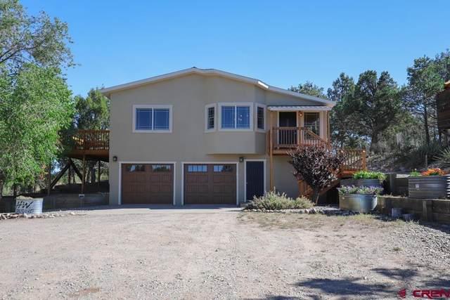 415 Mesa Linda Drive, Durango, CO 81303 (MLS #782977) :: The Howe Group   Keller Williams Colorado West Realty