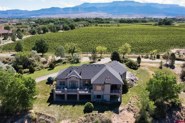 357 Vino Tinto Lane, Palisade, CO 81526 (MLS #783367) :: The Howe Group | Keller Williams Colorado West Realty