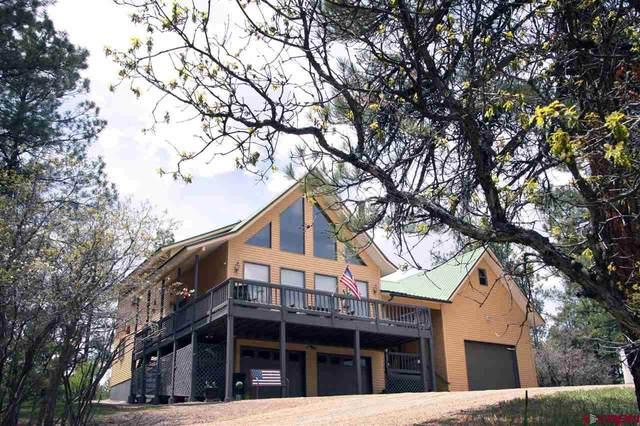 569 Eight Mile Loop, Pagosa Springs, CO 81147 (MLS #783788) :: The Howe Group   Keller Williams Colorado West Realty