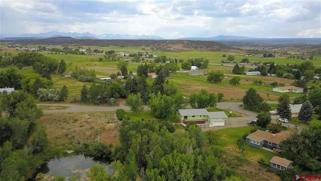 68200 Tumbleweed Road, Montrose, CO 81403 (MLS #784344) :: The Howe Group | Keller Williams Colorado West Realty