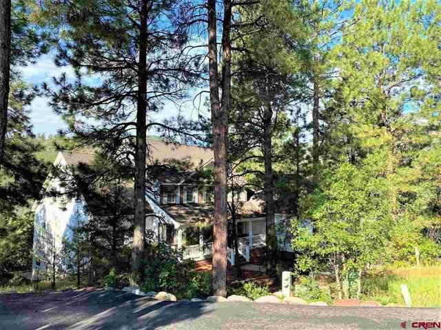10 Perins Vista, Durango, CO 81301 (MLS #784435) :: Durango Mountain Realty