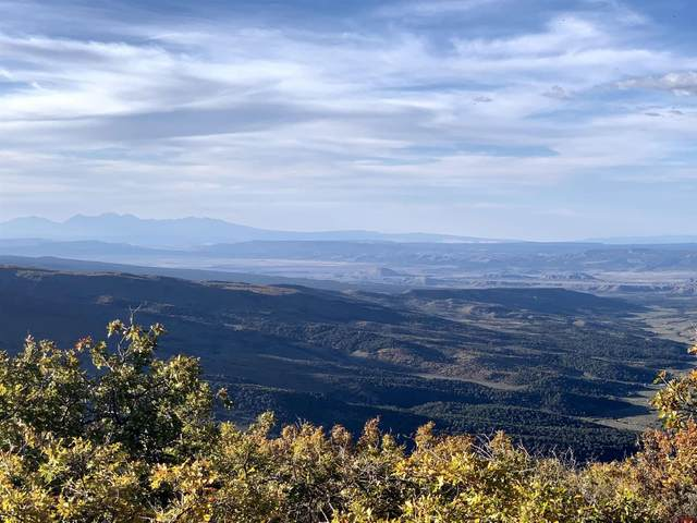 10050 Cr 29, Lot 53, Cahone, CO 81320 (MLS #784650) :: The Howe Group | Keller Williams Colorado West Realty
