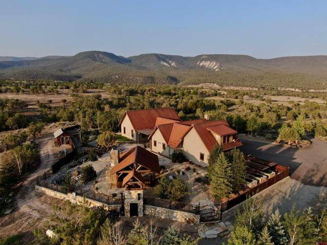 14287 3100 Road, Hotchkiss, CO 81419 (MLS #785042) :: The Howe Group | Keller Williams Colorado West Realty