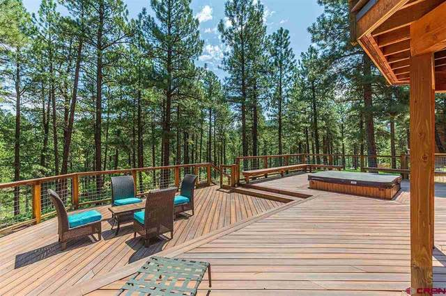 381 Iron King, Durango, CO 81301 (MLS #785263) :: The Howe Group   Keller Williams Colorado West Realty