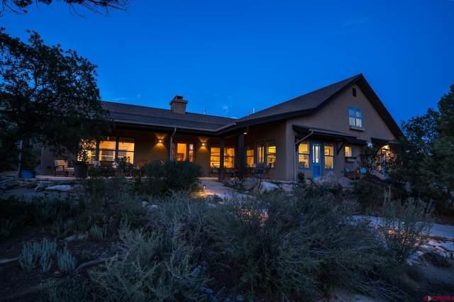 1241 Thoroughbred Road, Durango, CO 81303 (MLS #785514) :: Durango Mountain Realty