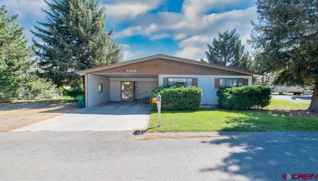 1056 Alpine Road, Montrose, CO 81403 (MLS #786270) :: The Howe Group | Keller Williams Colorado West Realty