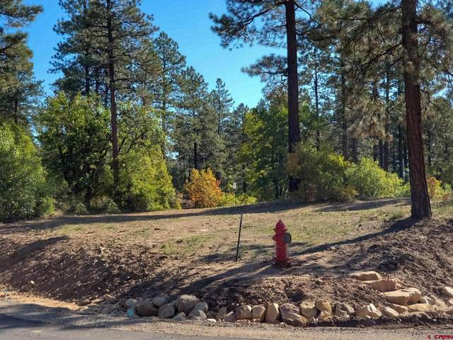 22 Incline Court, Durango, CO 81301 (MLS #786872) :: Durango Mountain Realty