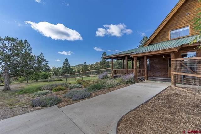 106 Winchester Lane, Bayfield, CO 81122 (MLS #787057) :: The Howe Group | Keller Williams Colorado West Realty