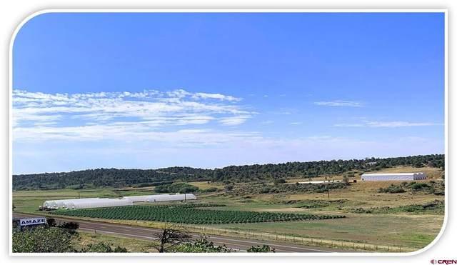 17 Dana Drive, Bayfield, CO 81122 (MLS #787228) :: The Howe Group | Keller Williams Colorado West Realty