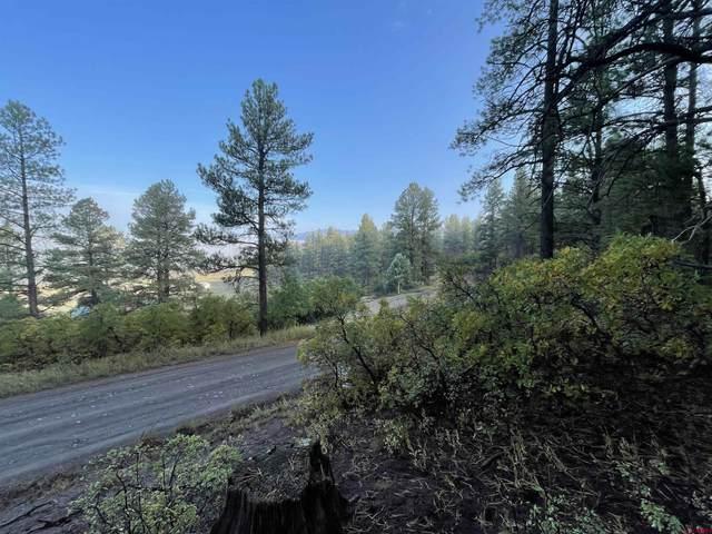 779 Pineview Road, Pagosa Springs, CO 81147 (MLS #787262) :: The Howe Group | Keller Williams Colorado West Realty