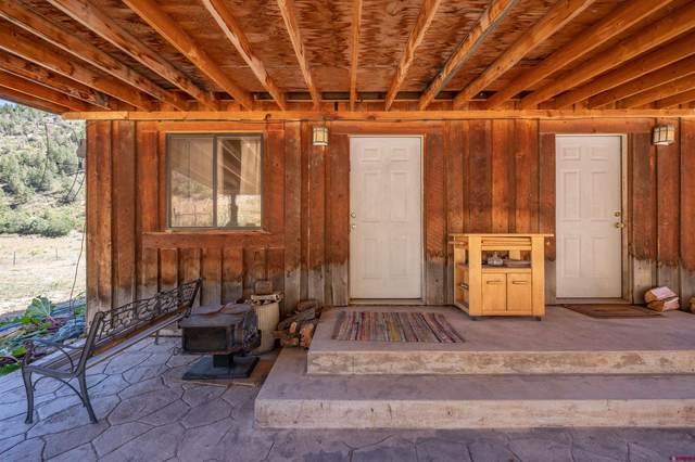TBD County Road 105, Mancos, CO 81328 (MLS #787459) :: Durango Mountain Realty