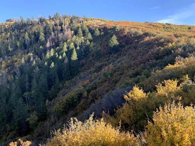 9880 Road 28.8, Lot 52, Cahone, CO 81320 (MLS #787521) :: The Howe Group | Keller Williams Colorado West Realty