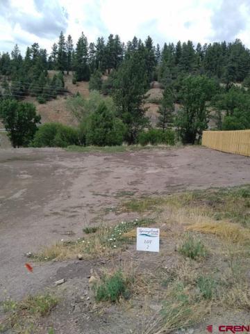 65 Spring Creek Village Place, Durango, CO 81301 (MLS #722352) :: CapRock Real Estate, LLC