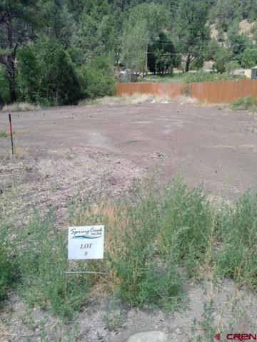 121 Spring Creek Village Place, Durango, CO 81301 (MLS #722358) :: Durango Mountain Realty