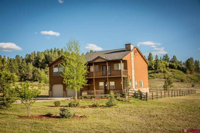 59 Hatcher Cir, Pagosa Springs, CO 81147 (MLS #741234) :: CapRock Real Estate, LLC