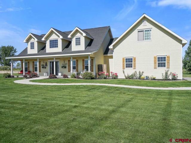 11785 Joyful Way, Montrose, CO 81401 (MLS #742783) :: CapRock Real Estate, LLC