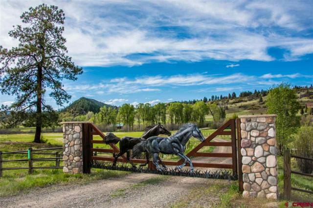 2500 County Road 382, Chromo, CO 81128 (MLS #743545) :: Keller Williams CO West / Mountain Coast Group