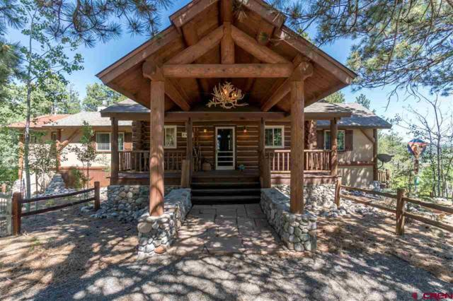 2925 Lodge Pole Drive, Pagosa Springs, CO 81147 (MLS #746235) :: The Dawn Howe Group | Keller Williams Colorado West Realty