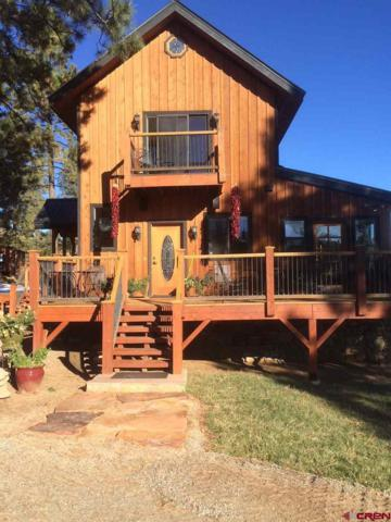 444 & 448 Conestoga Way, Hesperus, CO 81326 (MLS #748119) :: Durango Home Sales