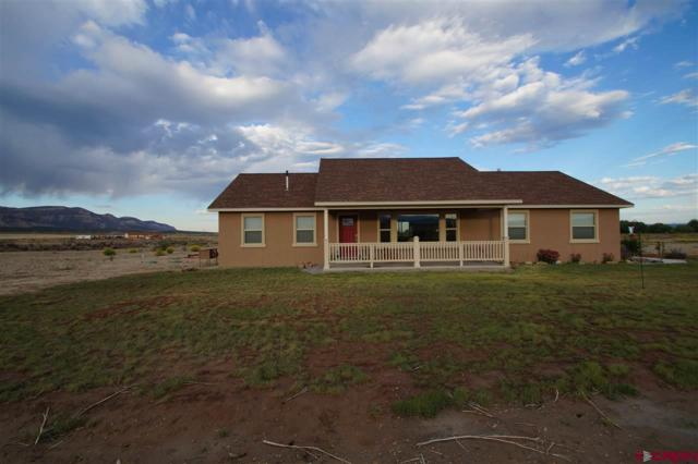 8201 Road 29.4 Loop, Cortez, CO 81321 (MLS #750140) :: Durango Home Sales
