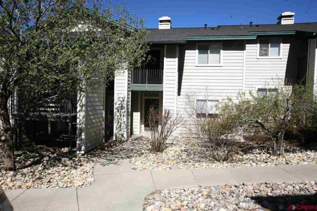1100 Goeglein Gulch Road #110, Durango, CO 81301 (MLS #754332) :: Durango Mountain Realty