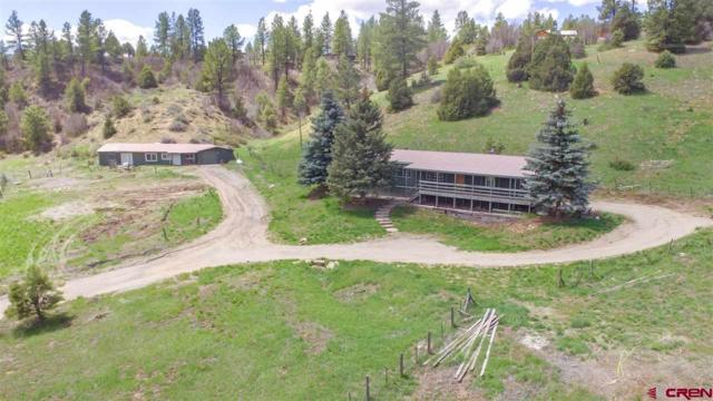 2415 Cr 141, Durango, CO 81303 (MLS #756293) :: The Dawn Howe Group | Keller Williams Colorado West Realty