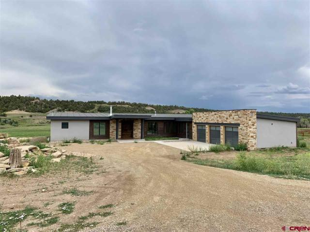 269 Cowboy Trail, Durango, CO 81303 (MLS #756502) :: Durango Mountain Realty