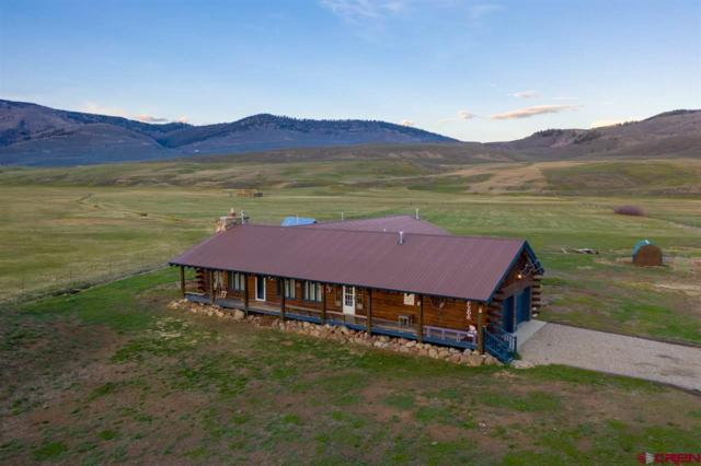 14434 Highway 135, Almont, CO 81210 (MLS #757058) :: The Dawn Howe Group | Keller Williams Colorado West Realty