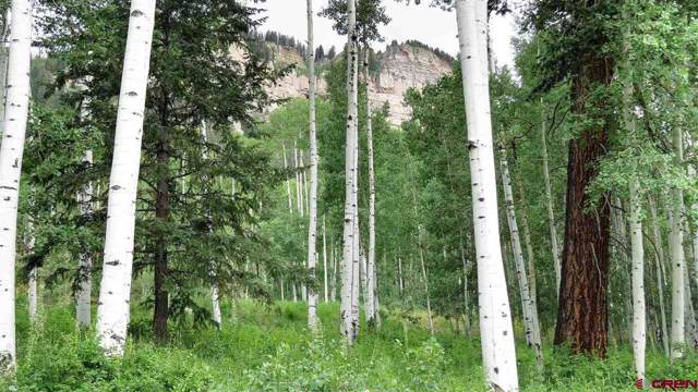 300 Scotch Creek Dr, Durango, CO 81301 (MLS #760476) :: Durango Mountain Realty