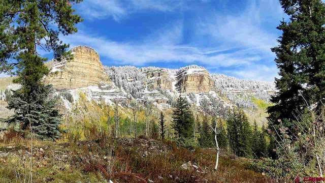 236 Two Dogs Trail, Durango, CO 81301 (MLS #760507) :: Durango Mountain Realty