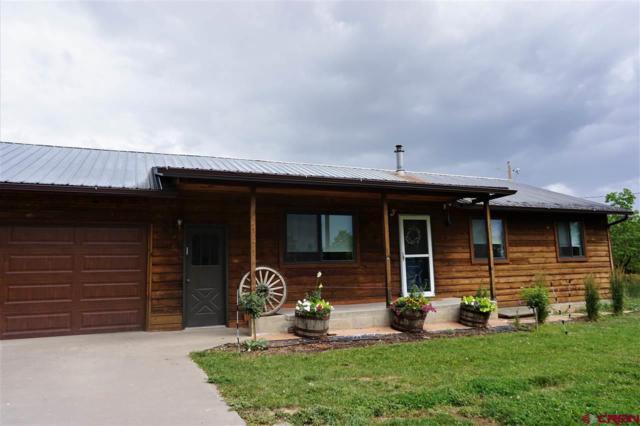 60 Vista Linda Avenue, Durango, CO 81303 (MLS #761617) :: Durango Mountain Realty