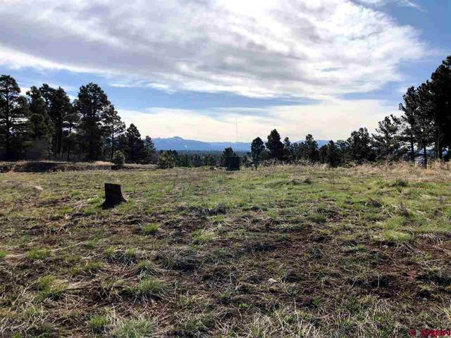 715 Oxbow Circle, Pagosa Springs, CO 81147 (MLS #768714) :: The Dawn Howe Group   Keller Williams Colorado West Realty