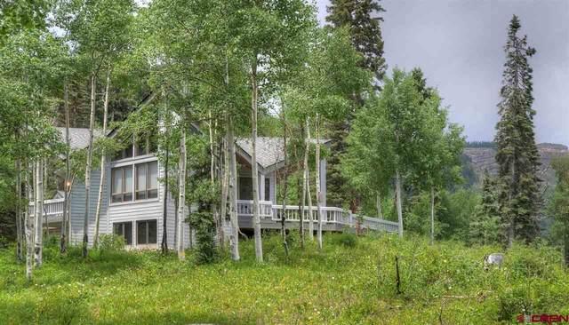 53001 N Hwy 550, Silverton, CO 81433 (MLS #770149) :: Durango Mountain Realty
