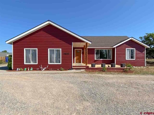 2627 Cr 220, Durango, CO 81303 (MLS #774031) :: Durango Mountain Realty