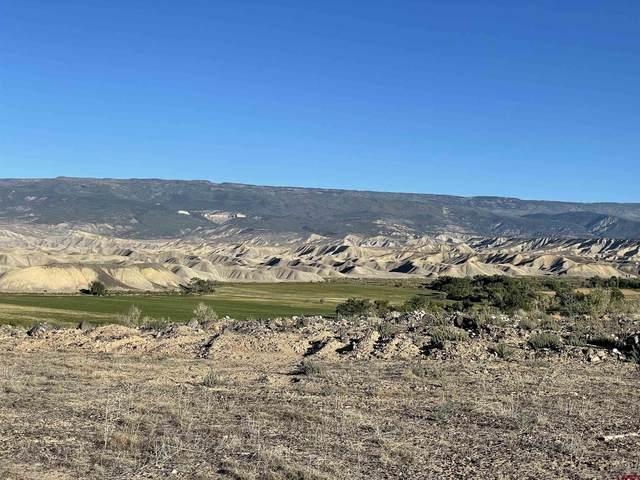 9331 1990 Lane, Austin, CO 81410 (MLS #784955) :: The Howe Group   Keller Williams Colorado West Realty