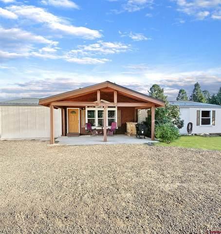 35763 P.6, Mancos, CO 81328 (MLS #786267) :: The Howe Group | Keller Williams Colorado West Realty