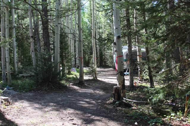 1050 & 1002 Hazel Lake Drive, Cimarron, CO 81220 (MLS #787234) :: The Howe Group | Keller Williams Colorado West Realty