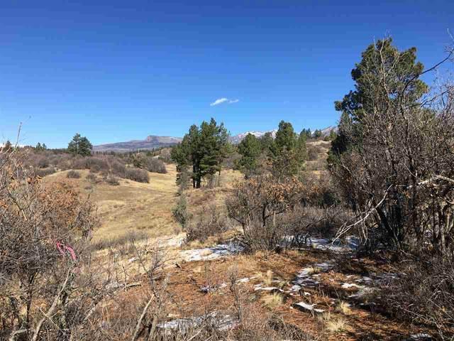 673 Spring Creek Cir, Pagosa Springs, CO 81128 (MLS #683040) :: The Howe Group   Keller Williams Colorado West Realty