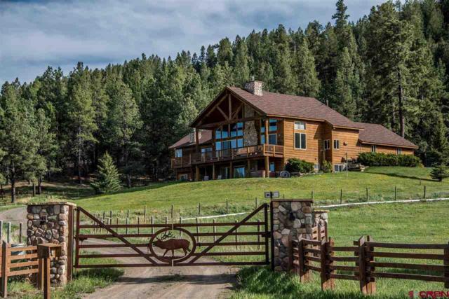 2751 County Road 382, Chromo, CO 81128 (MLS #743542) :: Durango Home Sales