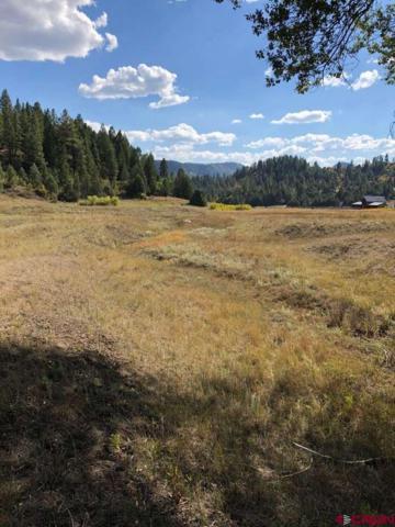 365 Bradley Place, Pagosa Springs, CO 81147 (MLS #751431) :: CapRock Real Estate, LLC