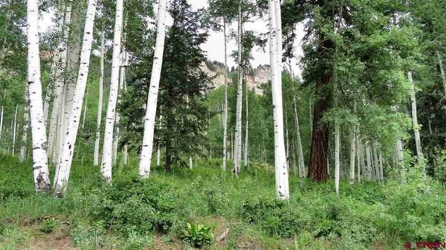 300 Scotch Creek Dr - Lot 12, Durango, CO 81301 (MLS #760476) :: Durango Mountain Realty